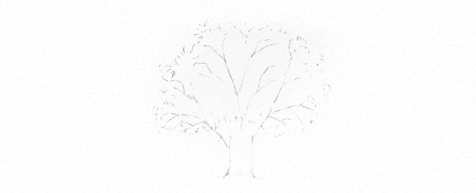 Намечаем ветви и листья