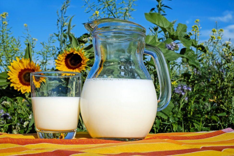 Козье молоко – целебный продукт, который поможет побороть приступы кашля