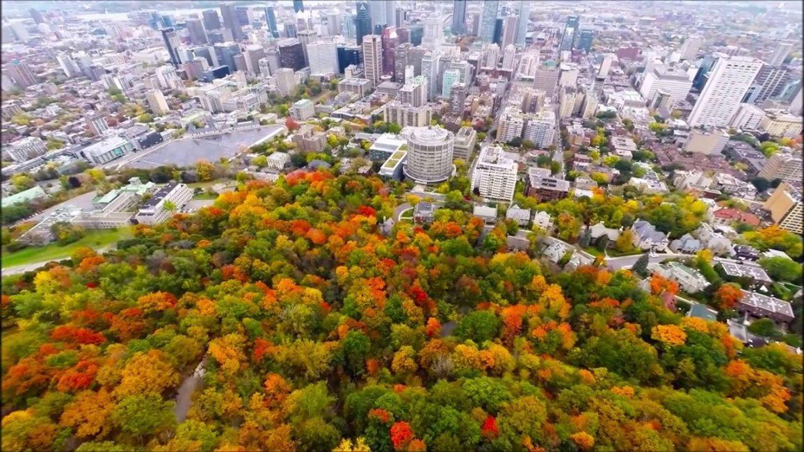 Ботанический сад Монреаля - крупнейший в Северной Америке