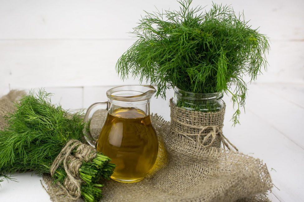 Оливковое масло и свежий укроп – незаменимые ингредиенты