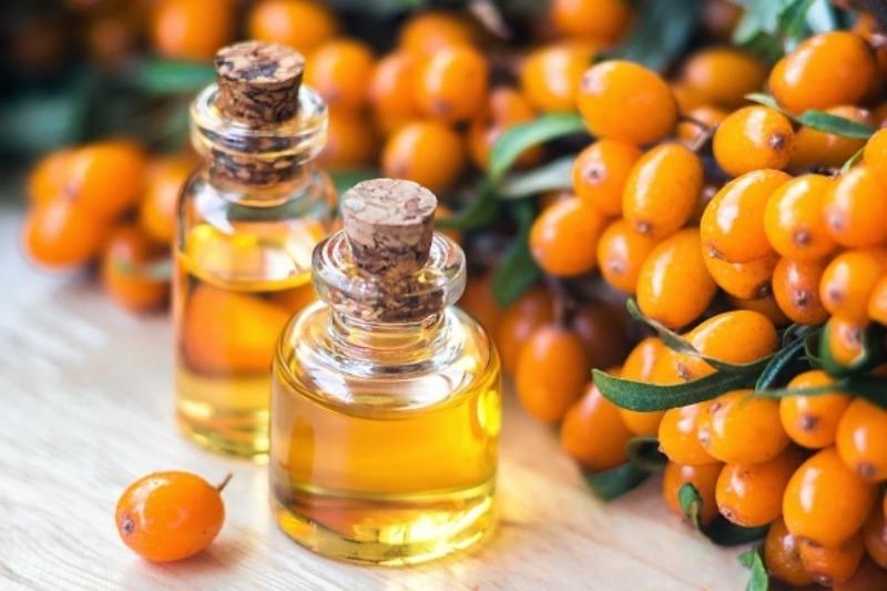 Репейное масло в сочетании с облепиховым маслом усилит эффект восстановления повреждённых волос