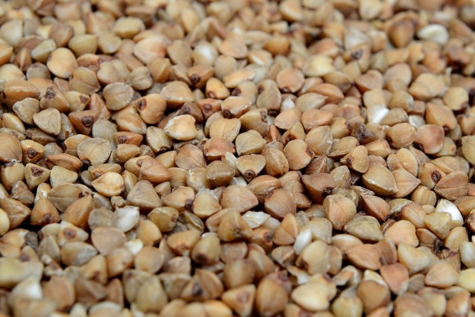 Гречневая крупа считается одним из самых полезных продуктов питания, который, наверное, есть у каждого россиянина в доме