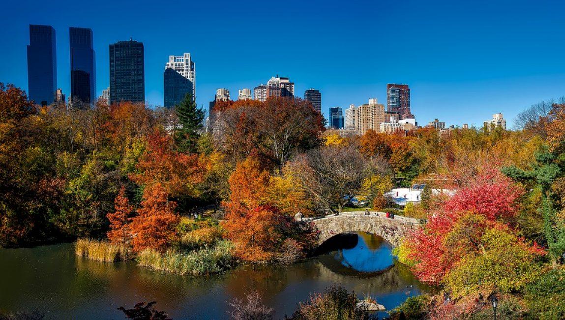 Центральный парк прекрасен в любое время года