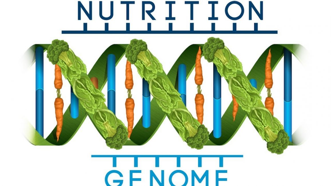 Нутригенетика – синтез генетики и диетологии