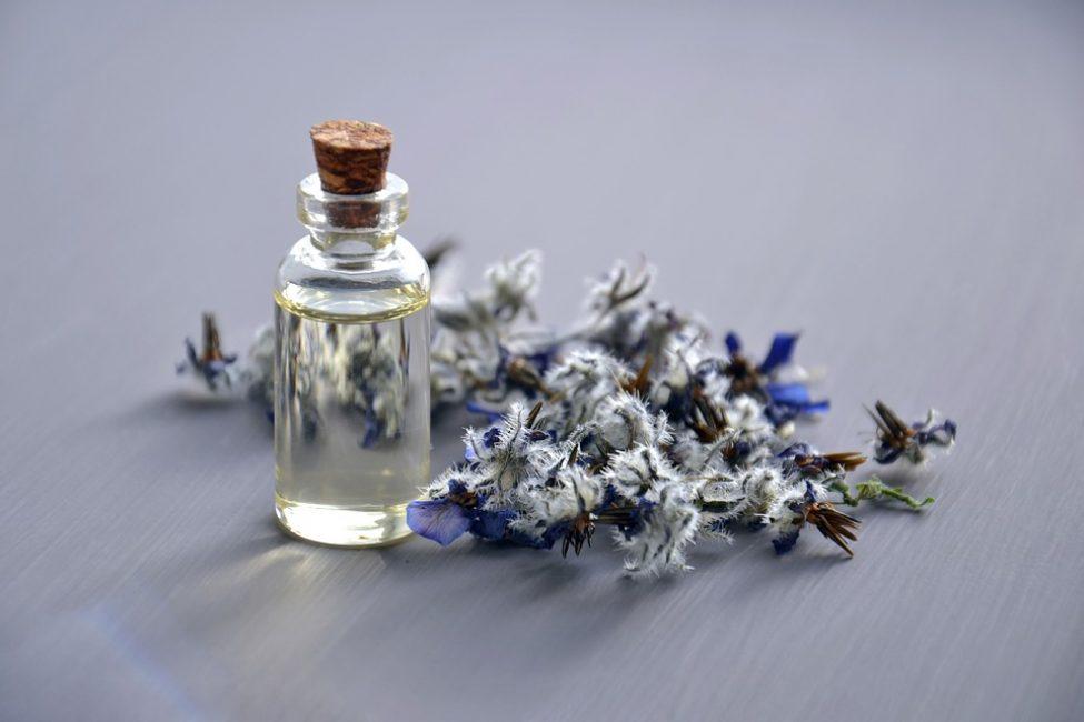 Розмарин и масло на его основе помогут победить приступы кашля