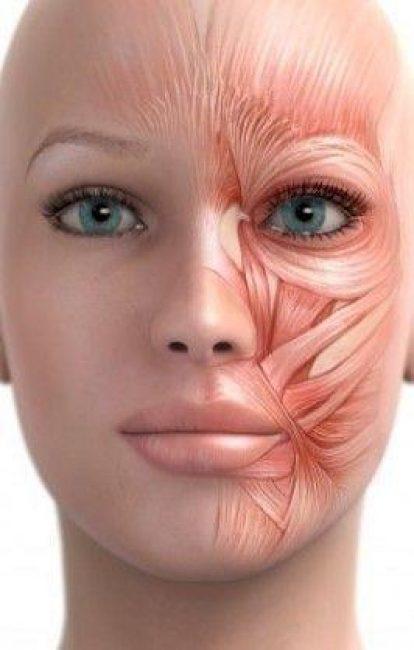 Гимнастика для лица - это совокупность упражнений, глубоких массажных техник, которые запускают внутренний процесс омоложения и приводят к формированию красивого лица