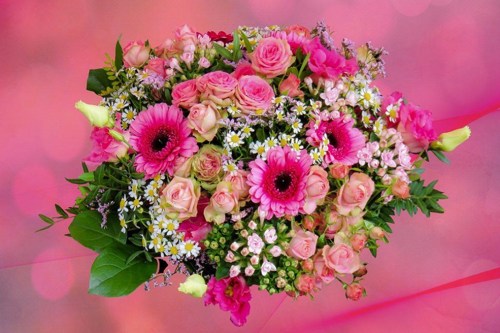 Мы все любим, когда нас окружает красота, гармония, порядок. И хотя на этот счёт у нас могут быть совершенно разные вкусы, все мы сойдемся в одном – хорошо, когда в доме есть цветы.
