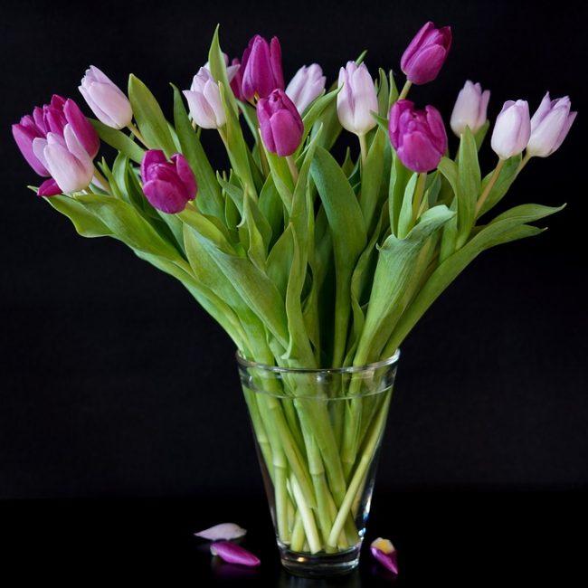 Из цветов можно делать маленькие букетики, их можно поставить в вазочку, разложить на столе, украсить ими портретик