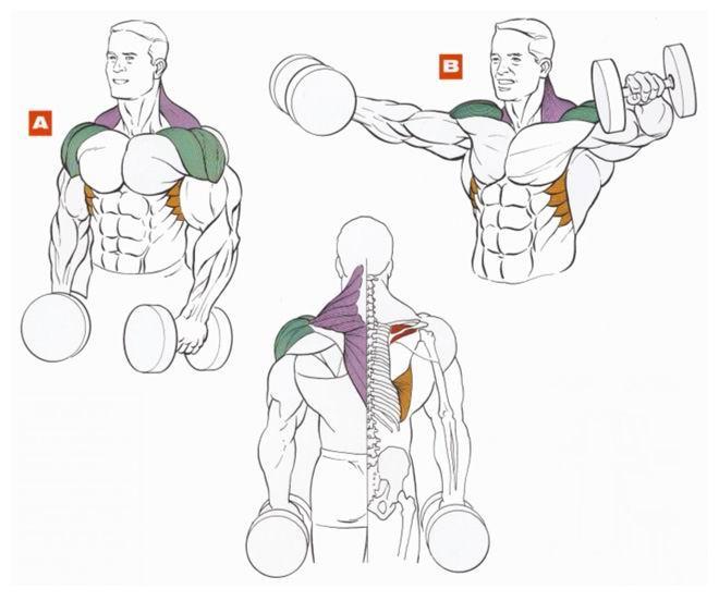 Упражнение для рук и плеч