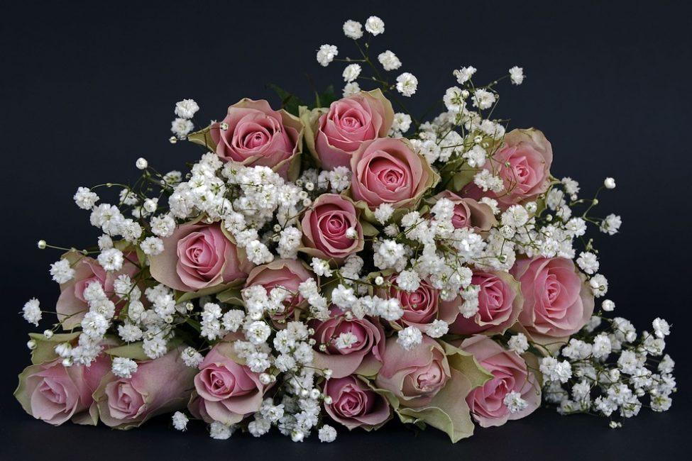 Бури сменяются затишьем, и жизнь продолжается, и розы цветут