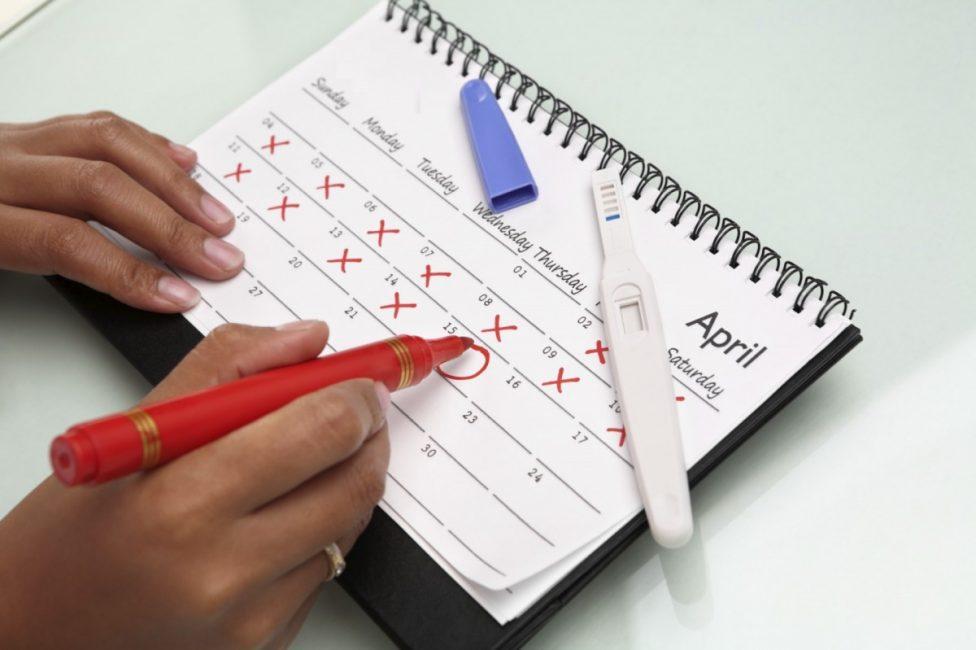 Женский календарь с отметкой первого дня менструации и дня овуляции
