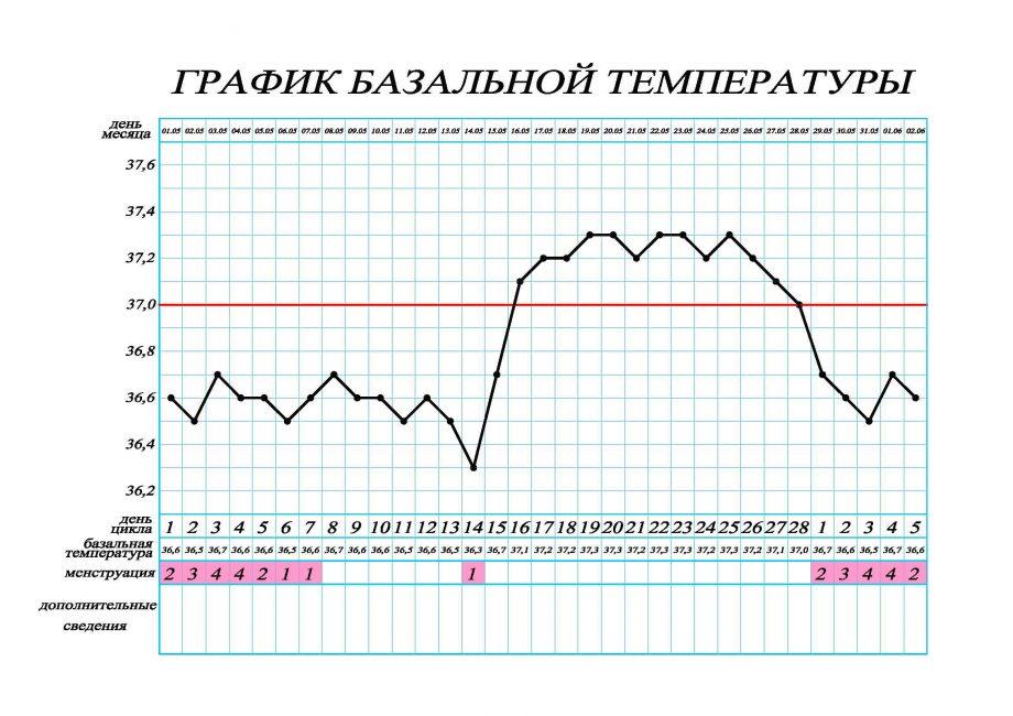 График базальной температуры в цикле без беременности
