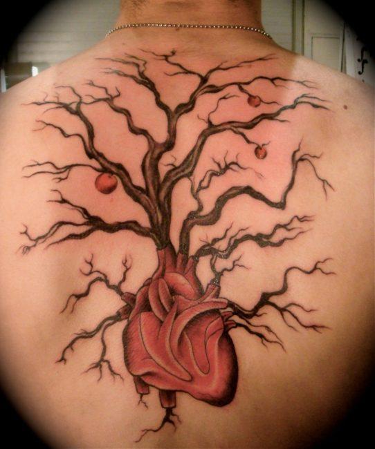 Татуировка на мужской спине: дерево-сердце