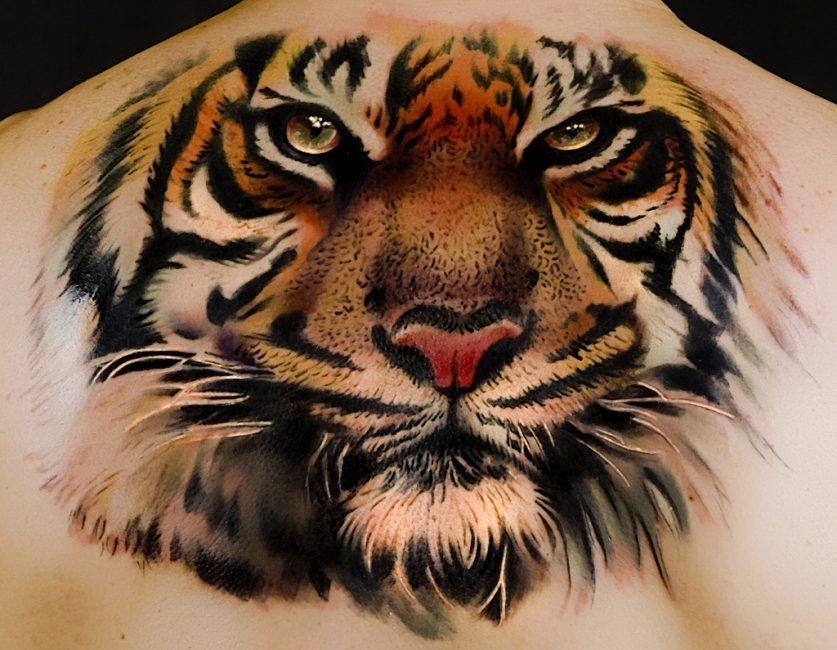 Тату голова тигра на спине