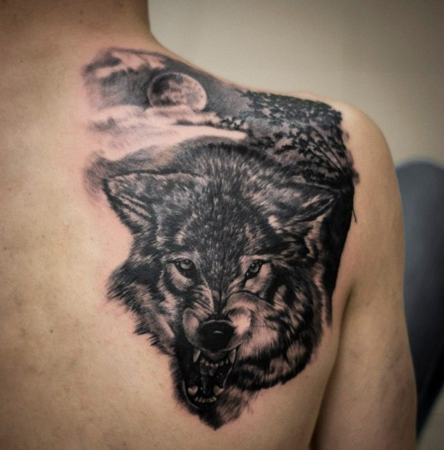 Волк на лопатке