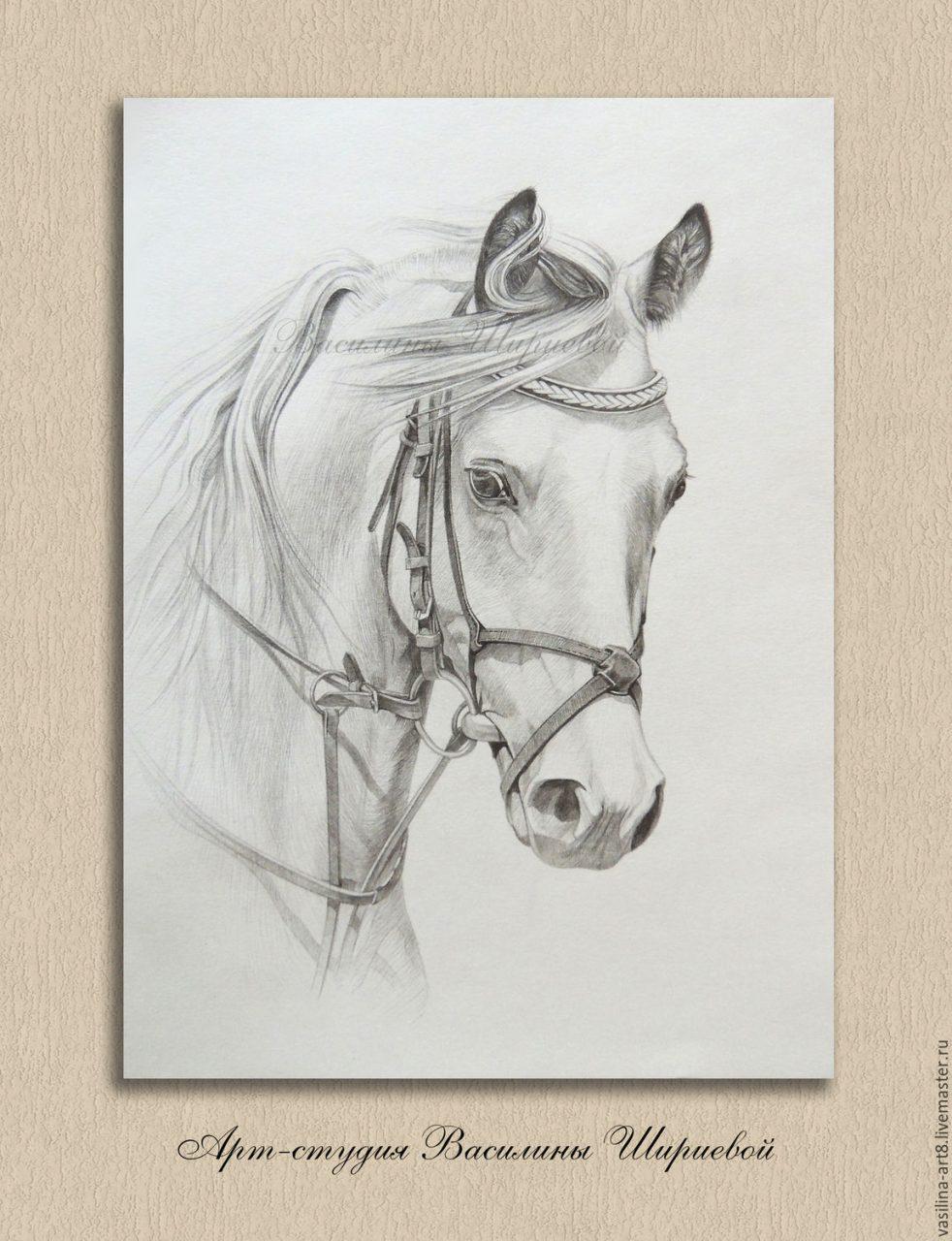 рисунки для срисовки лёгкие и красивые картинки для начинающих карандашом животные