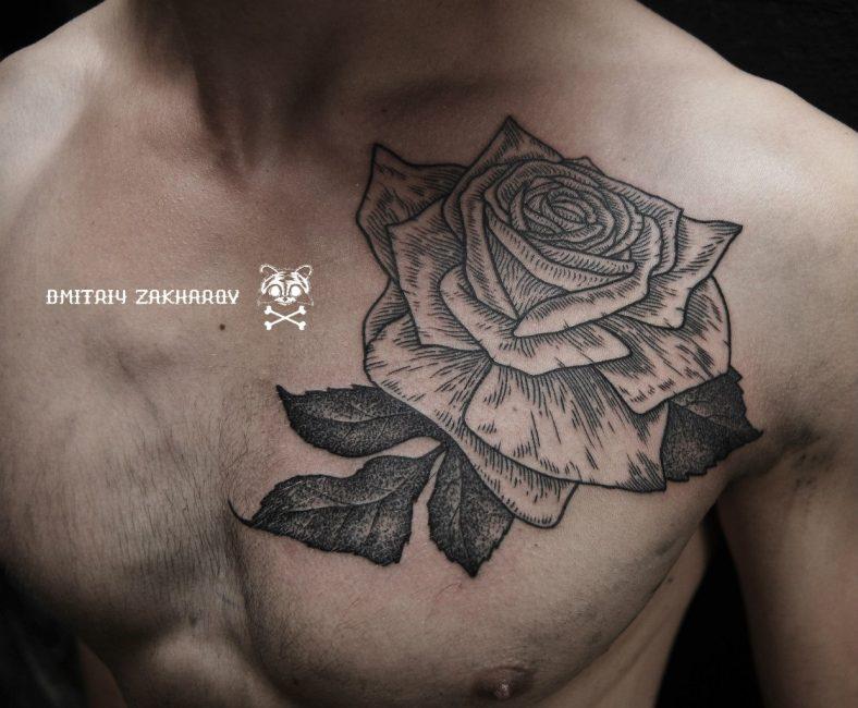 Роза на парне