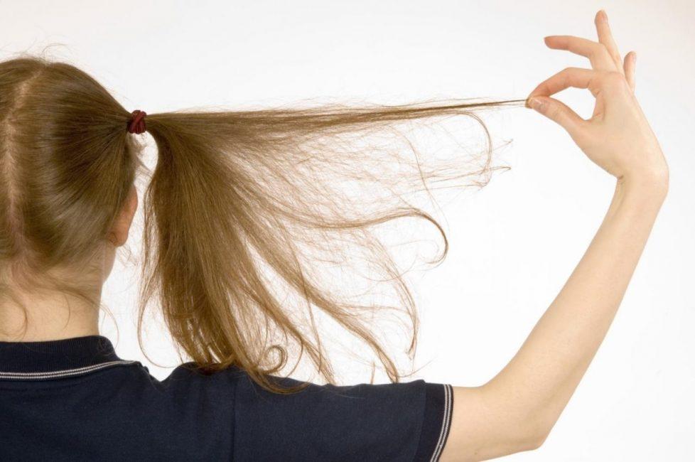 Согласно одному из древнейших сонников, написанному Эзопом, большое количество вшей у себя на голове предупреждает человека о предстоящих неприятностях и плохих новостях. При этом, чем больше насекомых – тем неприятнее будет полученное известие