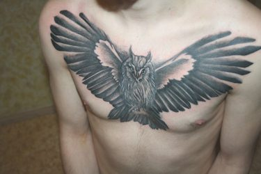 Тату с птицами и их значения: Феникс, Жар-Птица, для девушек, мужчин, на руке, запястье, с пером. Эскизы + 150 ФОТО.