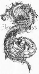 Тату с драконом: значение, эскизы, на руке, ноге, плече, спине. Татуировки дракона для мужчин и женщин + 155 ФОТО