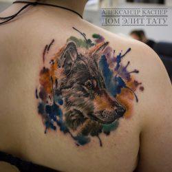 Тату с волками на руке, плече, предплечье, груди, ноге, геометрия, рисунки, картинки, мужские, для девушек. Что означает тату волка с оскалом + 155 ФОТО